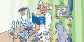 Подкаст Лайфхакера: 10 научно обоснованных причин завести кота
