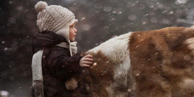 Зимняя фотосъёмка: Научитесь снимать снегопад