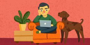Как работать на себя: 21 совет от прожжённого фрилансера