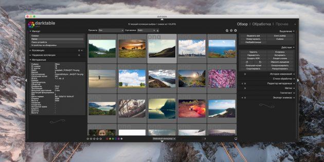 Как организовать коллекцию фотографий: darktable