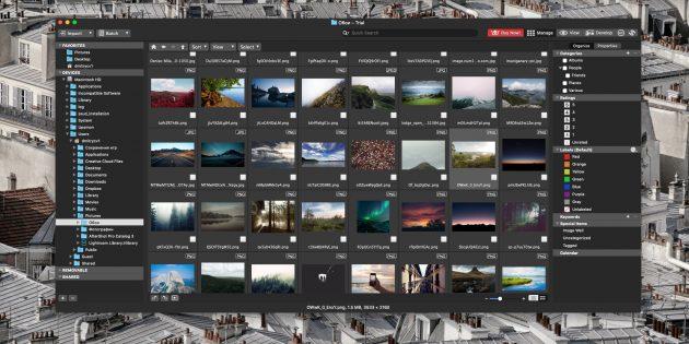 Как организовать коллекцию фотографий: ACDSee Photo Studio