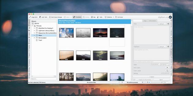 Как организовать коллекцию фотографий: digiKam