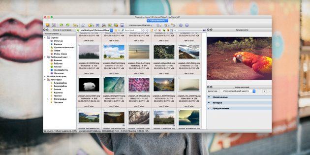 Как организовать коллекцию фотографий: XnView