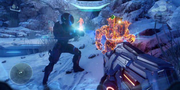 купить консоль: Halo 5