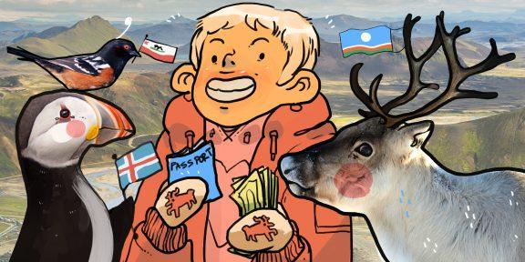 Как сэкономить в путешествии по Исландии, Якутии и Калифорнии: советы от трэвел-блогеров
