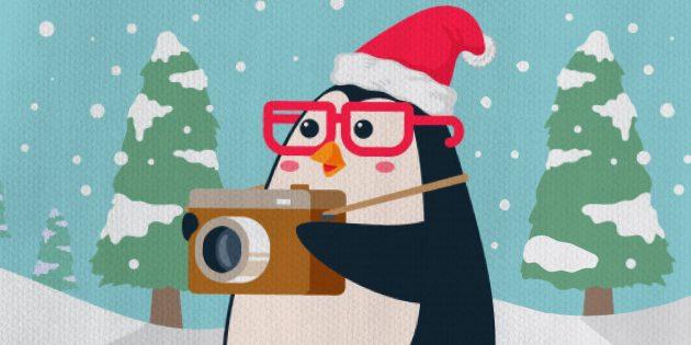 Советы по зимней фотосъемке
