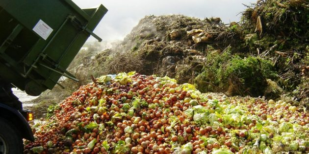 Осознанное потребление: Еда