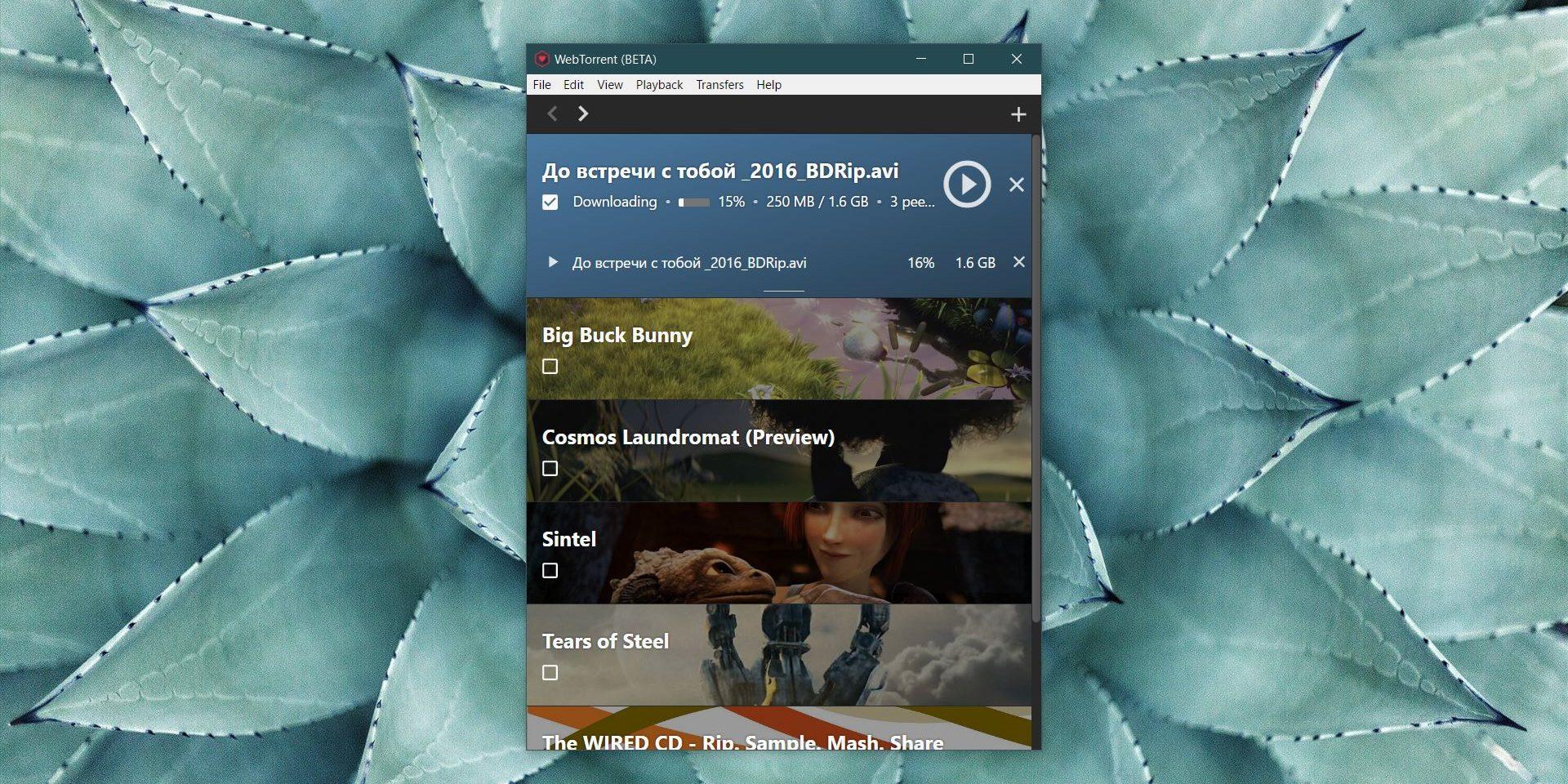 Смотреть фильм через торрент: Проигрывание видео в WebTorrent