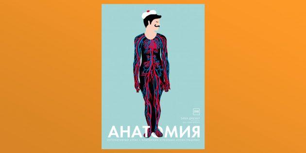 «Анатомия», Элен Дрювер