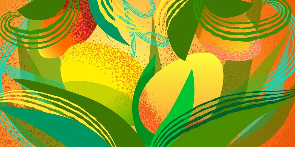 Как можно вырастить манго из косточки в открытом грунте и теплице в домашних условиях особенности посадки и ухода
