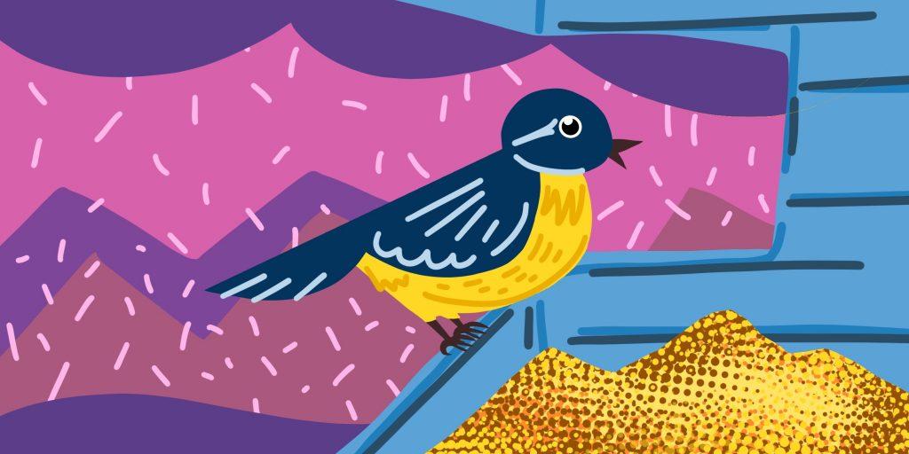 Кормушки для птиц своими руками: материалы для создания кормушек, виды кормушек, места развешивания кормушек, идеальное время прикорма птиц, полезный и вредный корм