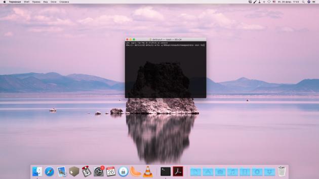 Cтрока меню и док macOS могут стать тёмными без изменения остального интерфейса: откройте «Терминал» и введите специальную команду