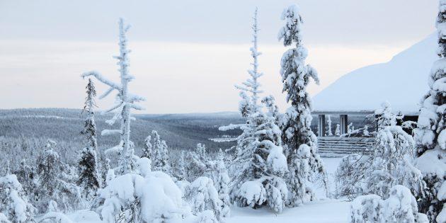 Куда поехать в Европе: Провинция Лапландия, Финляндия