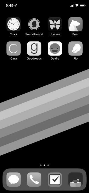Чёрно-белый экран iPhone