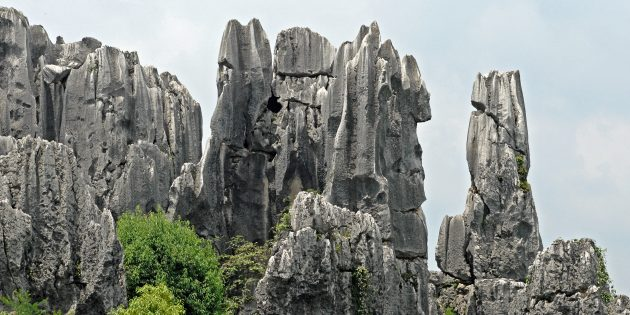 Территория Азии не зря привлекает туристов: каменный лес Шилинь, Китай