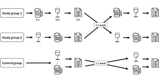 Стоит ли чередовать пиво и вино: эксперимент британских учёных