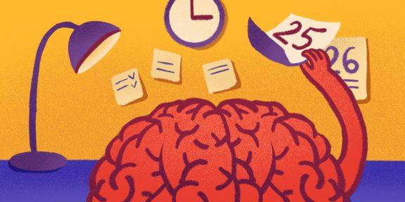 6 научных фактов о мозге, которые помогут организовать ваш день