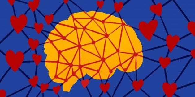 Мозг выявляет привлекательных людей