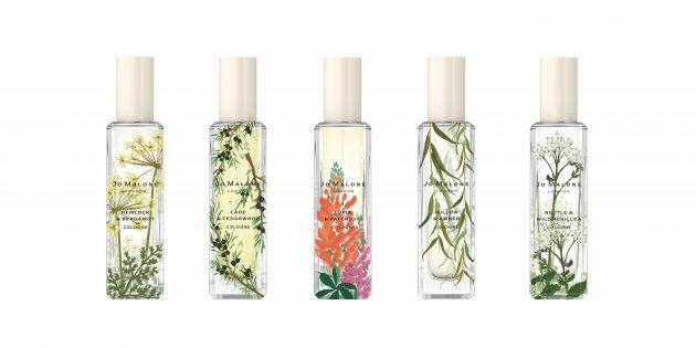 Что подарить девушке на 8Марта: парфюмерия