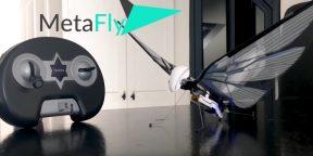 Штука дня: радиоуправляемая механическая колибри, взлетевшая на Kickstarter