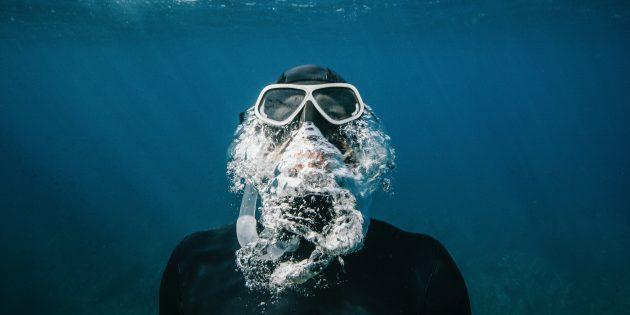 «Шестое вымирание»: Здесь, в морях завтрашнего дня, уже сегодня есть возможность искупаться и даже утонуть