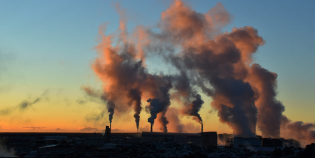 «Шестое вымирание»: Каждый год мы выбрасываем в атмосферу примерно 9миллиардов тонн углерода