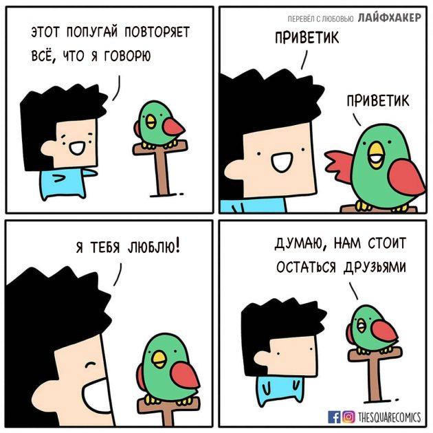Комиксы с неожиданной концовкой: Попугай