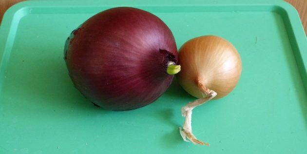 Как вырастить лук на подоконнике: Так выглядят подходящие для посадки луковицы