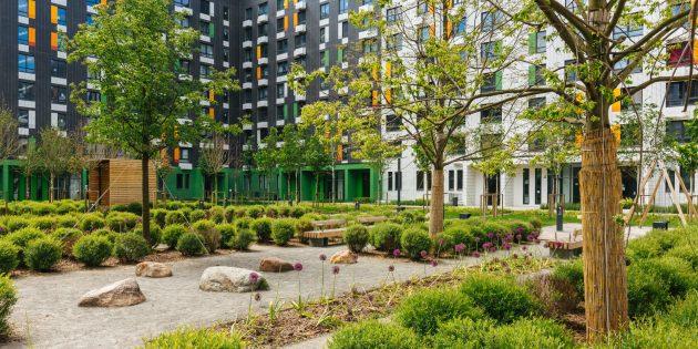 Детские площадки и прочие элементы среды: двор жилого района «Бунинские луга»