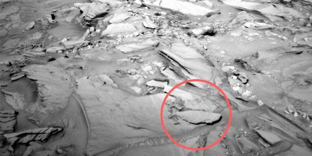 Фото космоса: окаменевшая рыба на Марсе