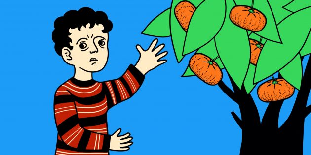 Задачи на логику: о мандаринах