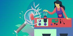 Подкаст Лайфхакера: 5 самых грязных мест на кухне, которые нужно держать в чистоте