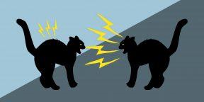 Подкаст Лайфхакера: 7 способов правильно ответить на оскорбление