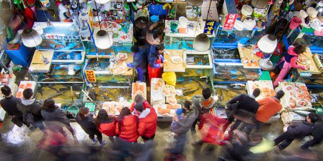 Достопримечательности Южной Кореи: стоит посетить рыбный рынок