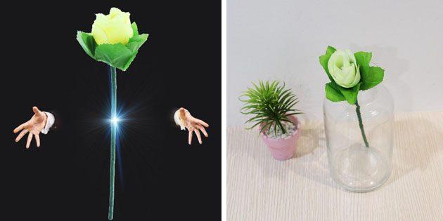Левитирующая роза
