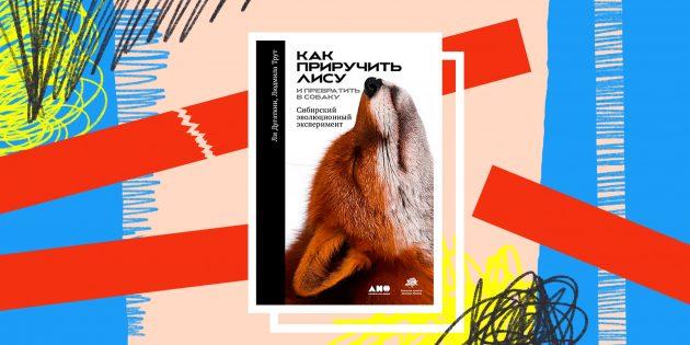 Книга дня: «Как приручить лису (и превратить в собаку)» — эксперимент по созданию идеального питомца