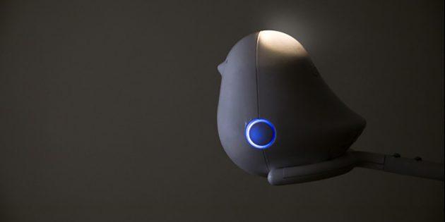 Cube AI: умная радионяня, которая уследит за всем