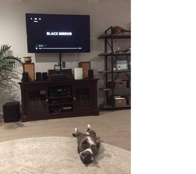Как зрители отреагировали на 5 сезон «Чёрного зеркала»