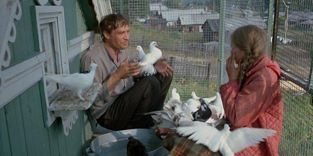 Советские фильмы: «Любовь и голуби»