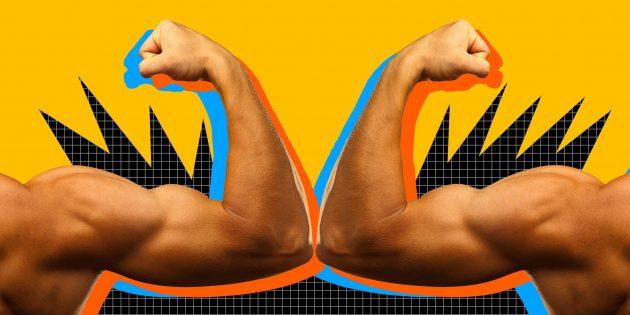 Почему размер и сила мышц — не одно и то же