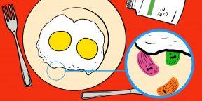 «Я съела яичницу и пролежала в инфекционке две недели»: 5 видов продуктов, которые портятся незаметно