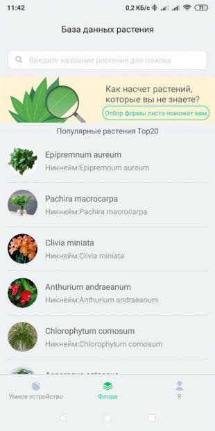 Умный цветочный горшок Youpin Flower Pot: управление со смартфона