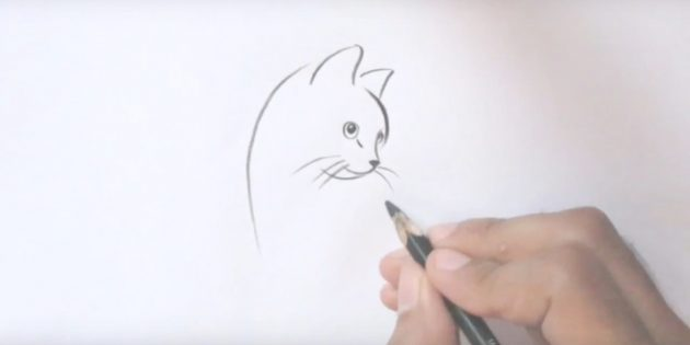 Подрисуйте кошке длинные усы