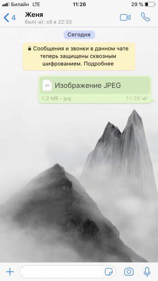 Фото в WhatsApp, отправленное без сжатия
