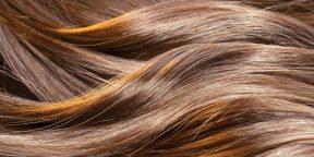 Почему волосы быстро жирнеют: 13 распространённых причин