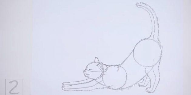 Изобразите шёрстку вдоль спинки и животика кошки. Подрисуйте хвост