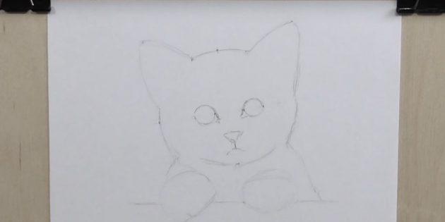 С помощью этих вспомогательных точек сделайте очертание кошачьей мордочки
