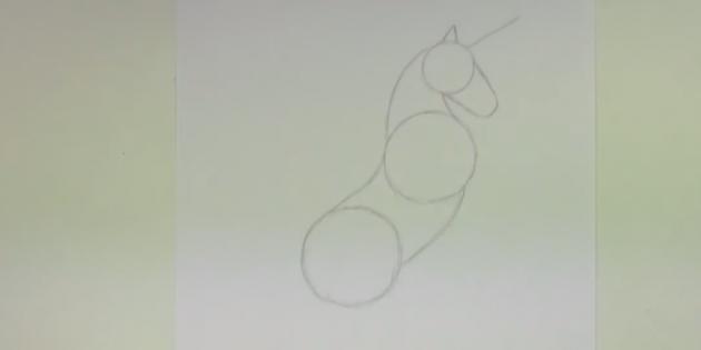 Соедините окружности плавными линиями и обозначьте рог