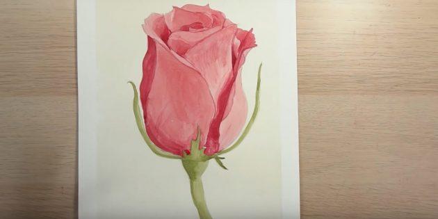 Как нарисовать полураскрытую розу красками