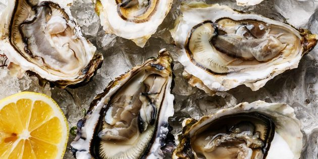 Устрицы, моллюски и мидии